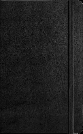 """MOLESKINE® Notizbuch """"L"""" Hardcover schwarz blanko/liniert 3"""